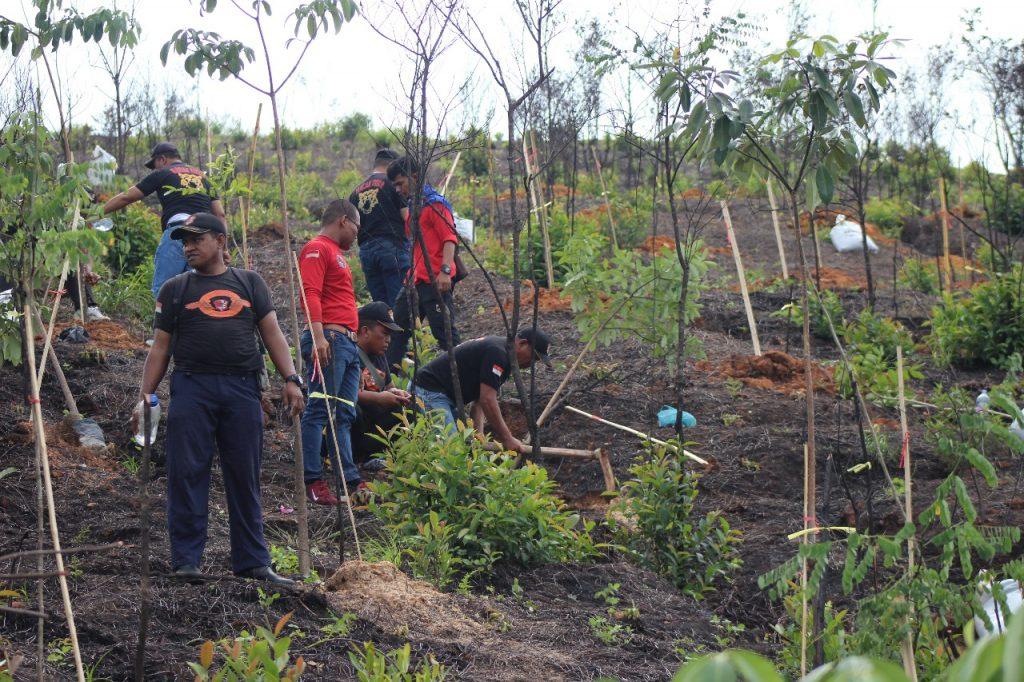 Personel Satpam PTP lakukan Penanaman Pohon